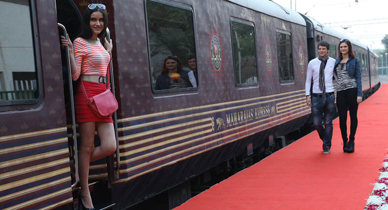 Solo Traveler Maharaja Express India