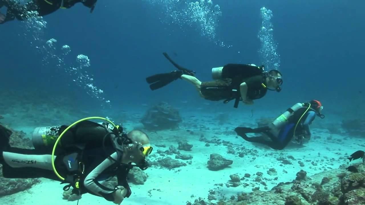 Blue Corner Palau Micronesia