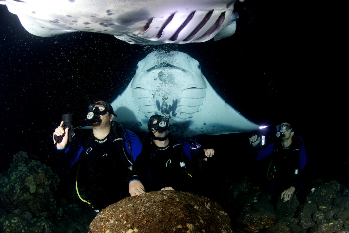 Manta Ray Night Dive ,Kailua Kona-Hawaii