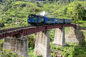 Nilgiri Mountain Toy Train