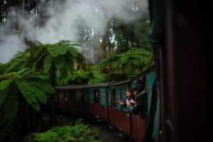 Nilgiri Toy Train Ride