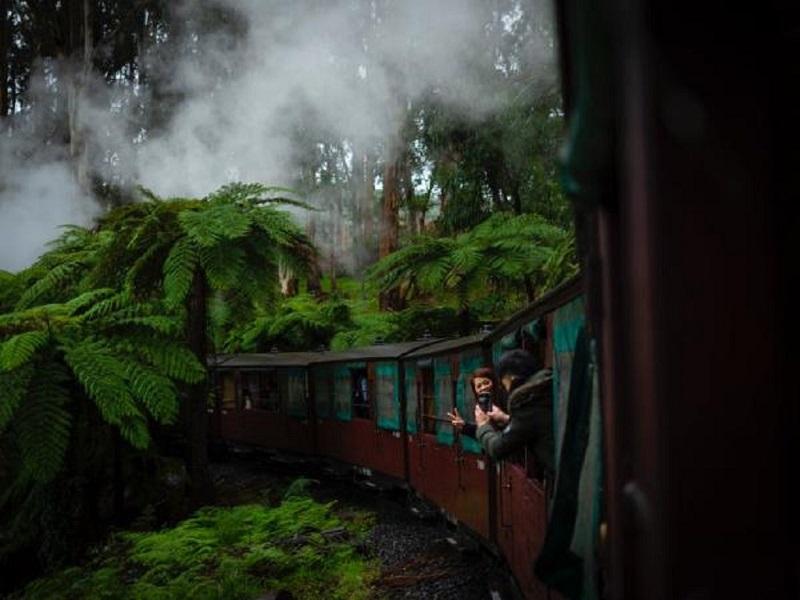 Nilgiri Mountain Railway Toy Train to Ooty - Price, Route and How to