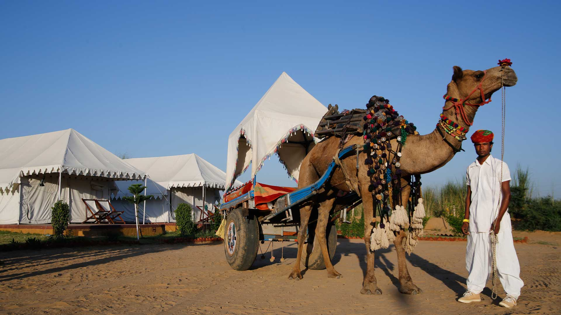 tent-camping-in-puskar-rajasthan