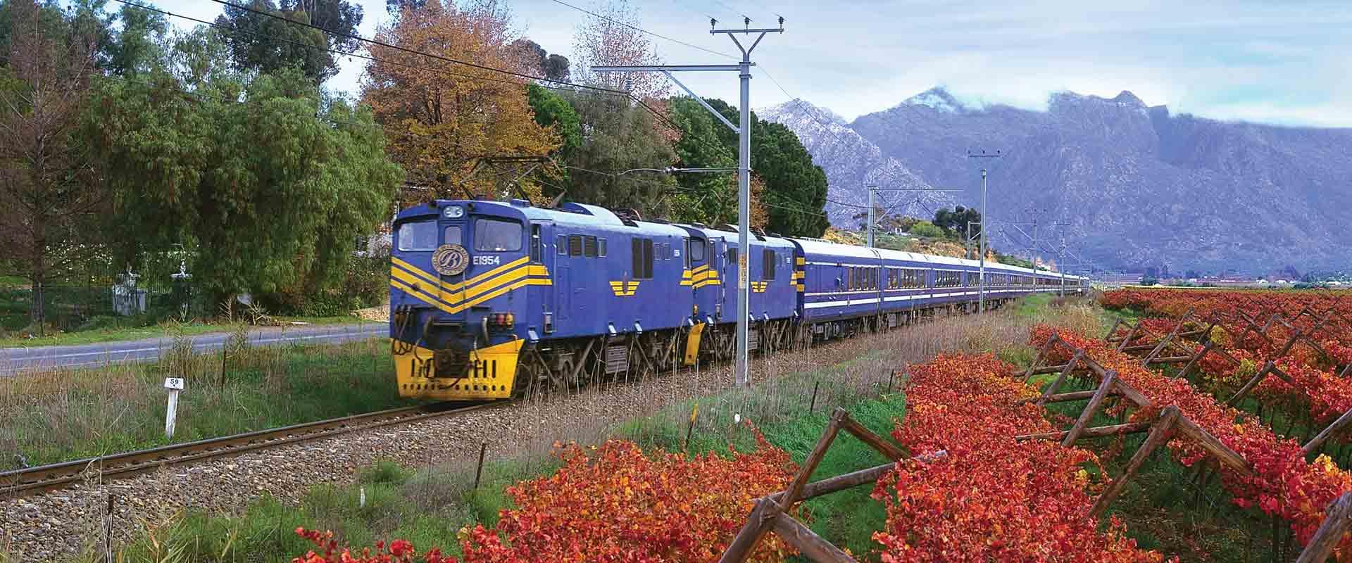 blue-train-africa